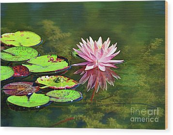 Water Lily And Frog Wood Print