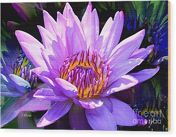 Water Lily In Purple Wood Print