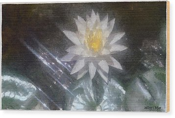 Water Lily In Sunlight Wood Print by Jeffrey Kolker