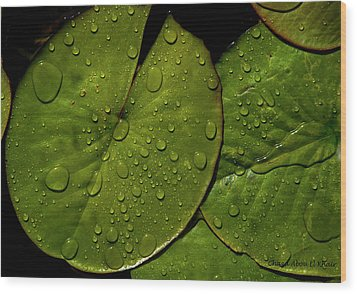 Water Lily Leaf Wood Print by Chaza Abou El Khair
