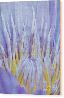 Water Lily Nature Fingers Wood Print by Carol F Austin