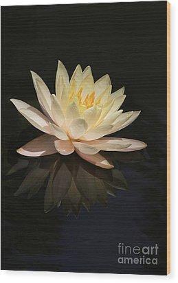 Water Lily Reflected Wood Print by Sabrina L Ryan