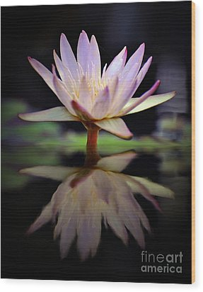 Wood Print featuring the photograph Water Lily by Savannah Gibbs