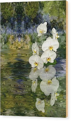 Water Orchid Wood Print by Tom Romeo