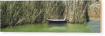 Water Scene Pano Wood Print by Svetlana Sewell