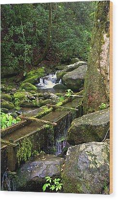 Water Sluice  Wood Print by Marty Koch