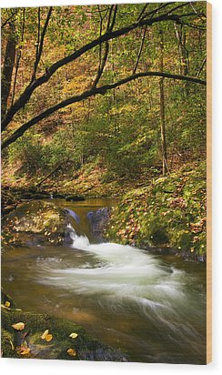 Wood Print featuring the photograph Water Swirl by Bob Decker