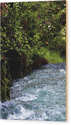 Watercolor Big Springs Missouri 2125 W_2 Wood Print