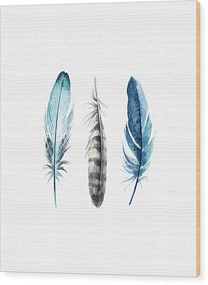 Watercolor Feathers Wood Print by Jaime Friedman