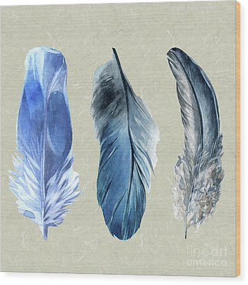 Watercolor Hand Painted Feathers Wood Print by Heinz G Mielke