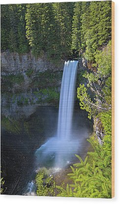 Waterfall At Brandywine Falls Provincial Park Wood Print by David Gn