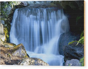 Waterfall At Dow Gardens, Midland Michigan Wood Print