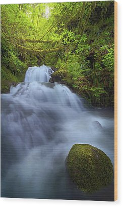 Waterfall At Shepperds Dell Falls Wood Print by David Gn