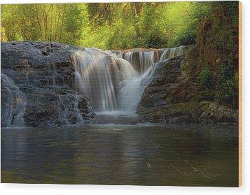 Waterfall At Sweet Creek Hiking Trail Complex Wood Print by David Gn