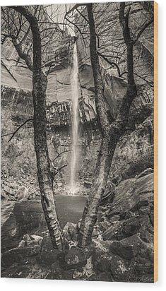 Waterfall At Upper Emerald Pool Wood Print