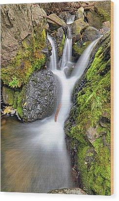 Waterfall Atop Wolf Creek Pass - Colorado - Nature Wood Print by Jason Politte