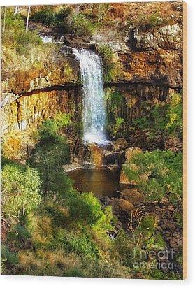 Waterfall Beauty Wood Print by Blair Stuart