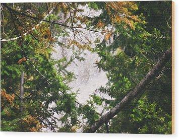 Waterfall Calling My Name Wood Print