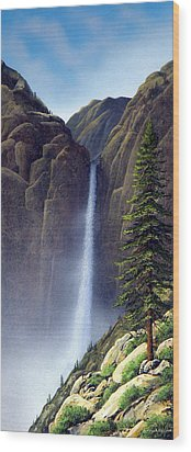 Waterfall Wood Print by Frank Wilson