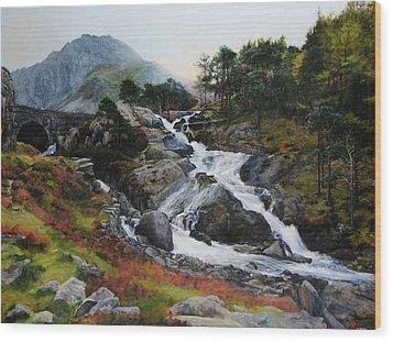 Waterfall In February. Wood Print