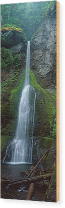Waterfall In Olympic National Rainforest Wood Print by Panoramic Images