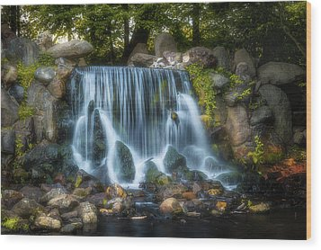 Waterfall In Sonsbeek Park Wood Print