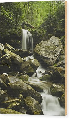Waterfall In The Spring Wood Print by Andrew Soundarajan