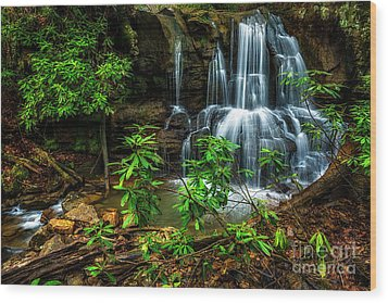 Wood Print featuring the photograph Waterfall On Back Fork by Thomas R Fletcher