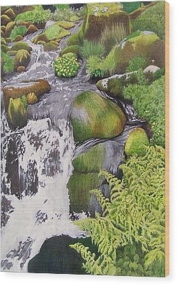 Wood Print featuring the mixed media Waterfall On Skye by Constance Drescher