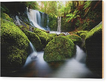 Waterfall Painting Waterfall Prints On Canvas - Horseshoe Waterfalls Wood Print by Frances Leigh