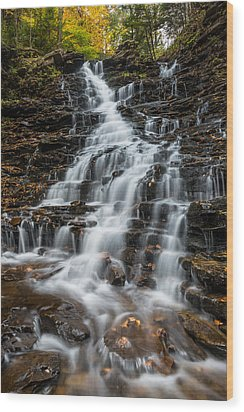 Ricketts Glen State Park Pennsylvania Wood Print by Rick Dunnuck