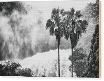 Waterfall Sounds Wood Print