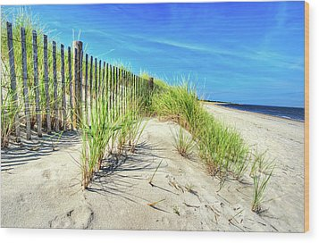 Wood Print featuring the photograph Waterfront Sand Dune And Grass by Gary Slawsky