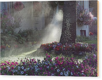 Watering The Lawn Wood Print by Keith Boone