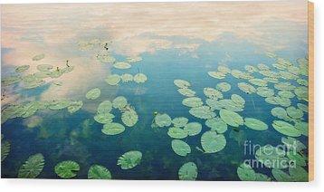Waterlilies Home Wood Print by Priska Wettstein