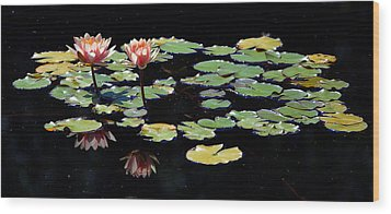 Wood Print featuring the painting Waterlily Panorama by Marilyn Smith