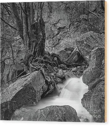 Wood Print featuring the photograph Waterside by Tatsuya Atarashi