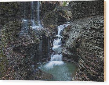 Watkins Glen Rainbow Falls Wood Print