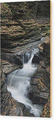 Wood Print featuring the photograph Watkins Glen Rapids by Joshua House