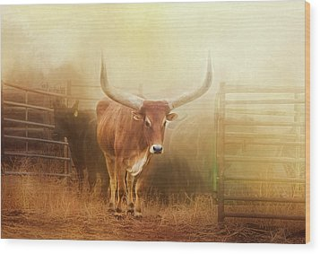Watusi In The Dust And Golden Light Wood Print