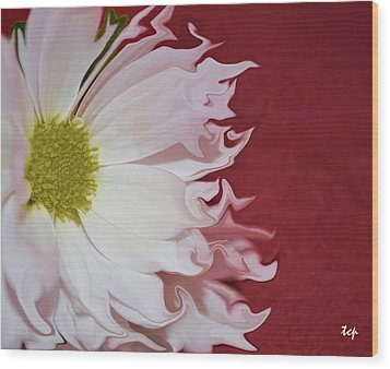 Wood Print featuring the photograph Waves Of White by Traci Cottingham