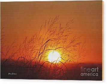 Waving Sun Wood Print