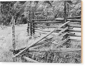 Weathered Fence Wood Print by Larry Ricker
