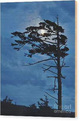 Weathered Moon Tree Wood Print by Michele Penner