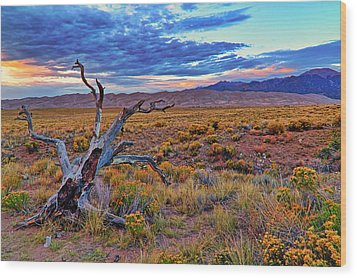 Weathered Wood And Dunes - Great Sand Dunes - Colorado Wood Print by Jason Politte