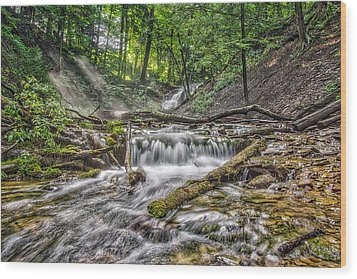Weaver's Creek Falls Wood Print by Irwin Seidman
