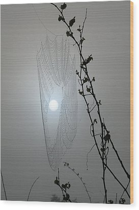 Wood Print featuring the photograph Web Glow by Peg Urban