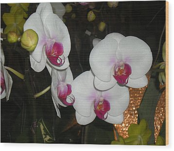 Wood Print featuring the photograph Wedding Orchids by Kim Prowse