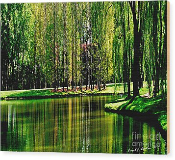 Weeping Willow Tree Reflective Moments Wood Print by Carol F Austin