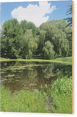 Wood Print featuring the photograph Weeping Willows Pere Marquette by Beth Akerman